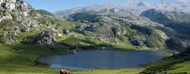 Obtén cita previa para pasaporte en Asturias por Internet en dos sencillos pasos.