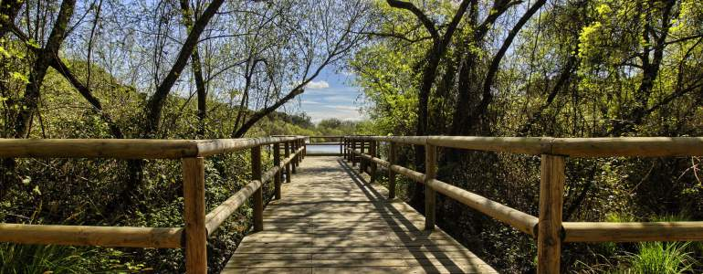 Obtén tu cita previa para consultar prestaciones en Huelva por Internet o físicamente.